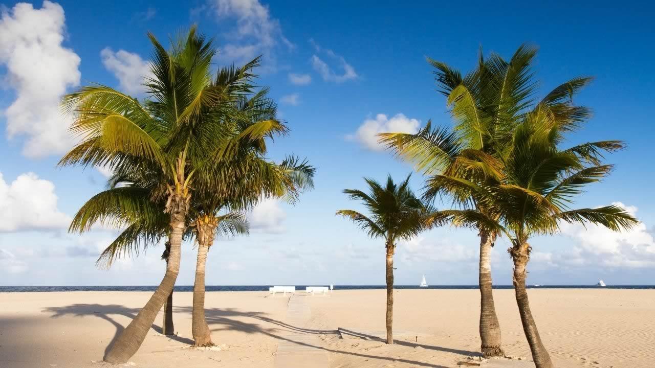 Orlando Florida Beach safety – DWKMRS